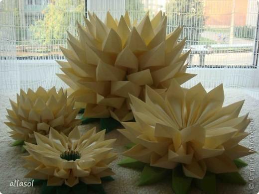 Модульное оригами лотоса схема