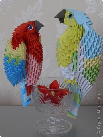 Модульное оригами - Попугаи