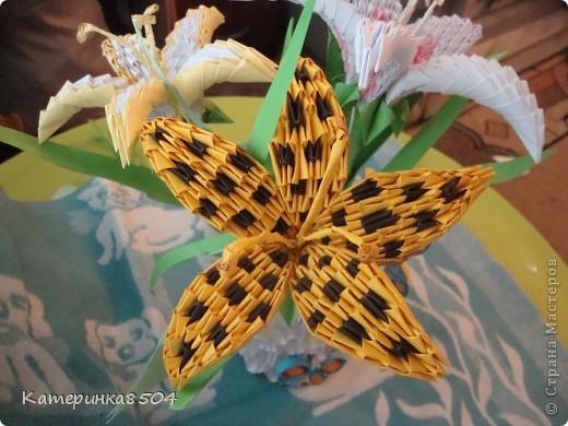 Модульное оригами - Лилия